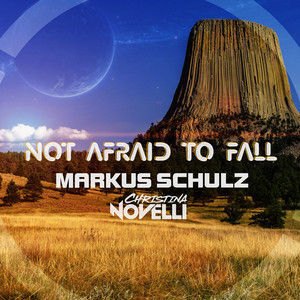 Not Afraid to Fall - The WLT Remix cover art