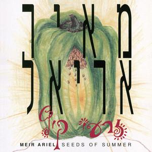 זרעי קיץ - Meir Ariel