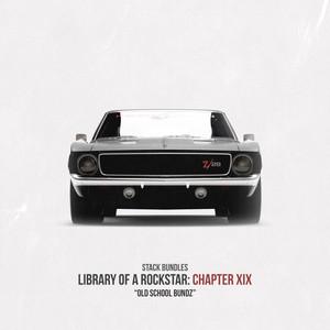 Library of a Rockstar: Chapter 19 - Old School Bundz