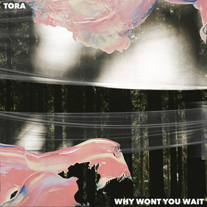 Why Won't You Wait by Tora