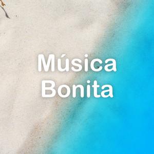Música Bonita - Marco Antonio Solís