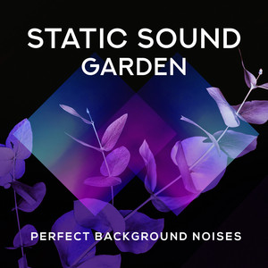 Static Sound Garden: Perfect Background Noises
