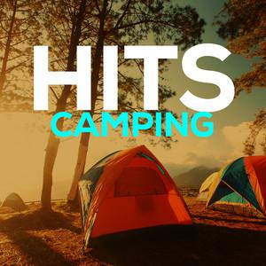 Hits Camping