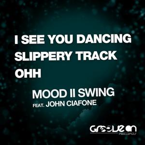 Slippery Track - Original Mix cover art