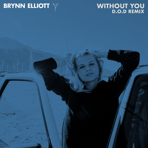 Without You (D.O.D Remix)
