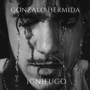 Inocente by Gonzalo Hermida, Funambulista