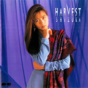 Arashi no Sugao cover art
