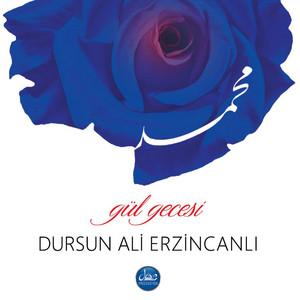 Üveysin Aşkı cover art