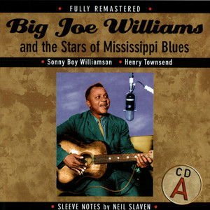 Big Joe Williams And The Stars Of Mississippi Blues album