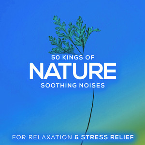 50 Kings of Nature: Soothing Noises for Relaxation & Stress Relief