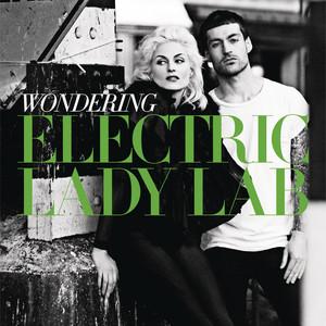 Electric Lady Lab - Wondering