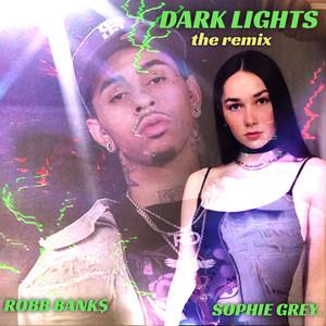 Dark Lights (The Remix)