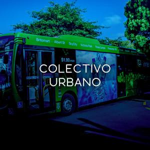 Colectivo Urbano