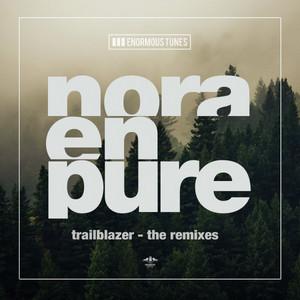 Trailblazer - The Remixes