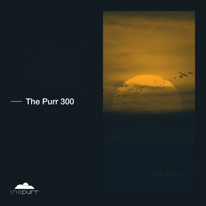The Purr 300