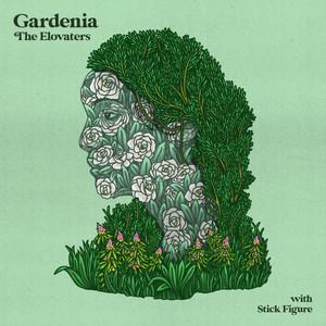Gardenia (with Stick Figure)
