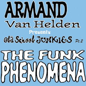The Funk Phenomena - Da Hool Remix cover art