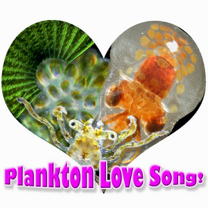 Plankton Love Song (Go with the Flow)