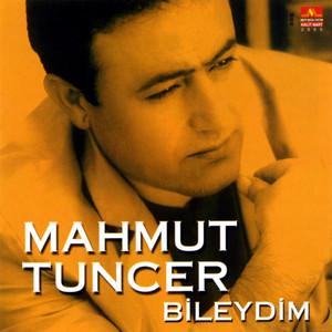 Ölme Eşeğim by Mahmut Tuncer