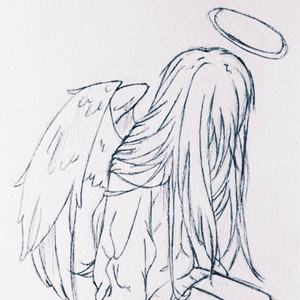 soar away