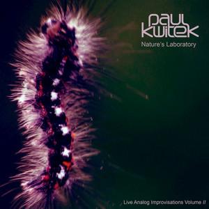 Stream of Light by Paul Kwitek