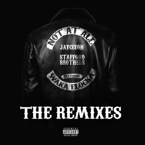 Not At All (The Remixes)