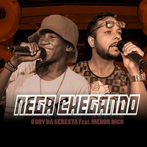 Nega Chegando cover art