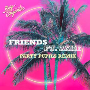 Friends (Party Pupils Remix)