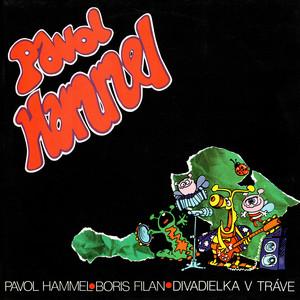 Pavol Hammel - Divadielka v tráve