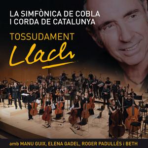 Tossudament Llach - Lluis Llach