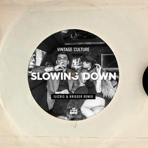Slowing Down - iLicris & KRIEGER (BR) Remix cover art