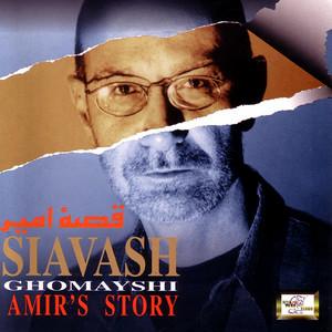 Amir's Story
