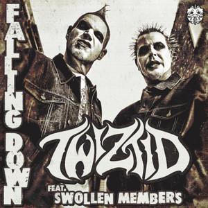 Falling Down (feat. Swollen Members)