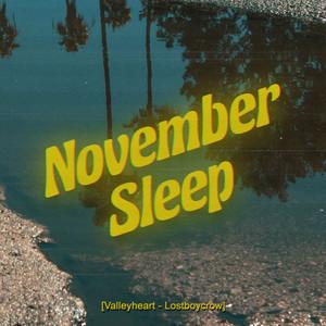 November Sleep