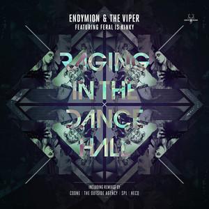 Raging in the dancehall - Original Mix