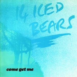 14 Iced Bears