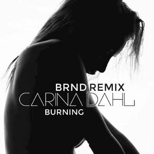 Burning (BRND Remix)