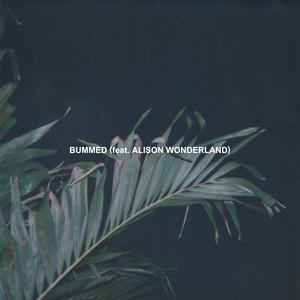 Bummed (feat. Alison Wonderland)