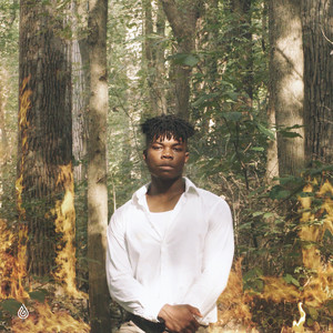 I Need A Forest Fire album cover