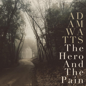 The Hero and the Pain album