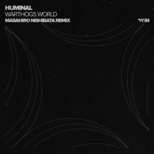 Warthogs World - Masahiro Nishibata Remix cover art