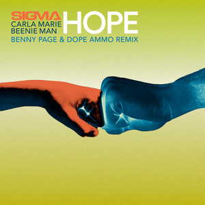 Hope (Benny Page & Dope Ammo Remix)
