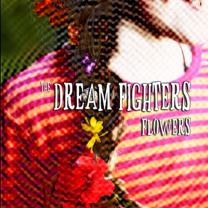 The Dream Fighters