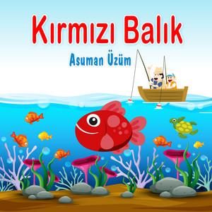 Pazara Gidelim cover art