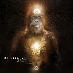 The Squatch Expands Life - Grouch Remix by Mr Squatch, Grouch