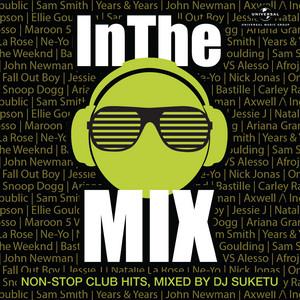 In The Mix (Mixed By DJ Suketu)