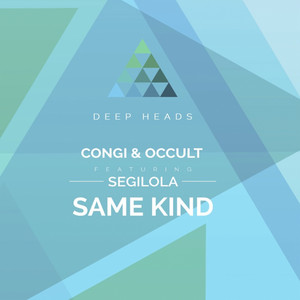 Same Kind - Audialist Remix cover art