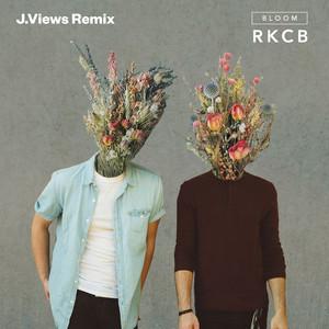 Bloom (J.Views Remix)