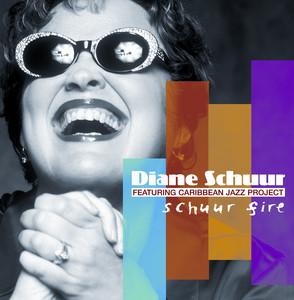 Schuur Fire album