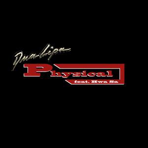 Physical (feat. Hwa Sa)